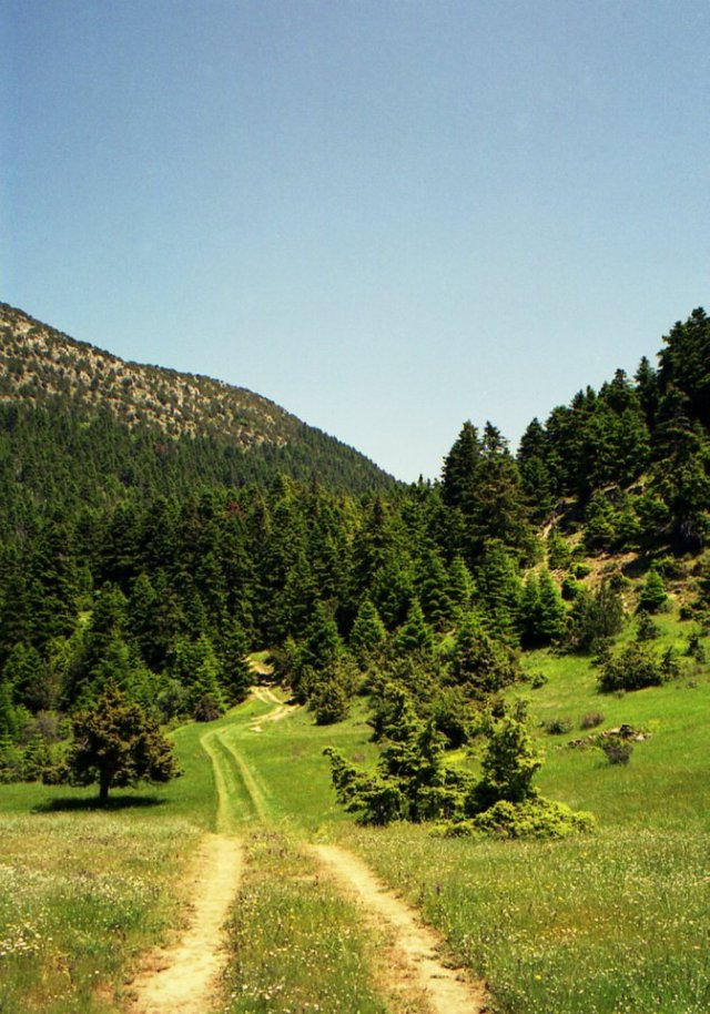 Just follow the road into paradise! Shot close to the village of Ano Klidonia. #Zagori, #Epirus, #Greece