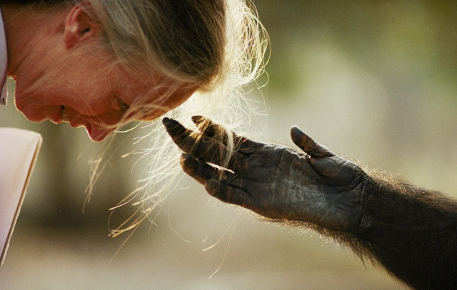 proof-jane-goodall-122635