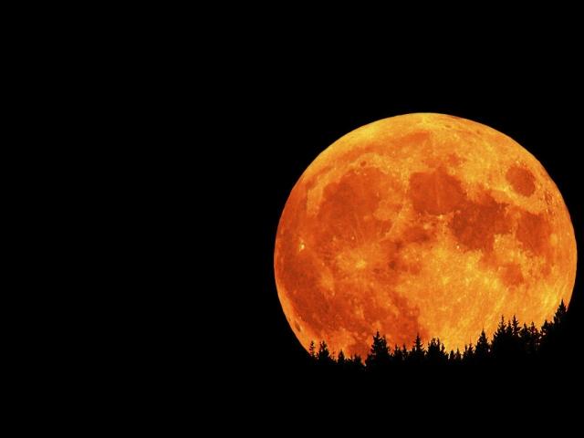 Lunar-Eclipse-moon-22921626-1024-768